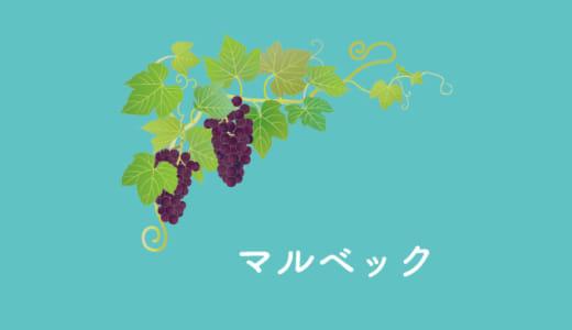 黒ワインの異名を持つブドウ、マルベック|品種の特徴とおすすめワイン