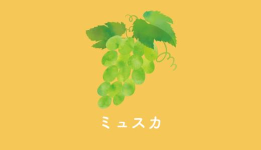 マスカットフレーバーな品種【ミュスカ】のおすすめワインと特徴